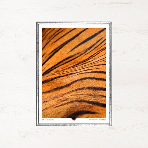 Tigerens pels - Plakat