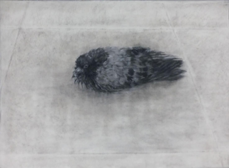 보도블럭, conte on  paper, 76x56cm, 2015