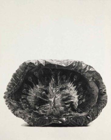 tomato 2-2, conte on Korean paper, 165x130, 2011