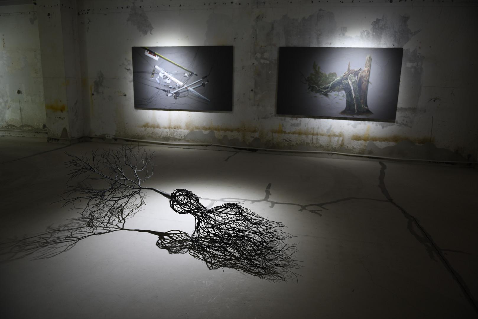(2) An unpredictable day, installation view