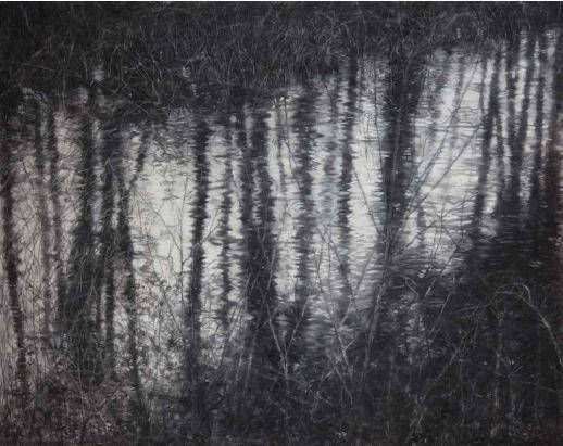 녹색의 이미지, conte on Korean paper, 130x165cm, 2015