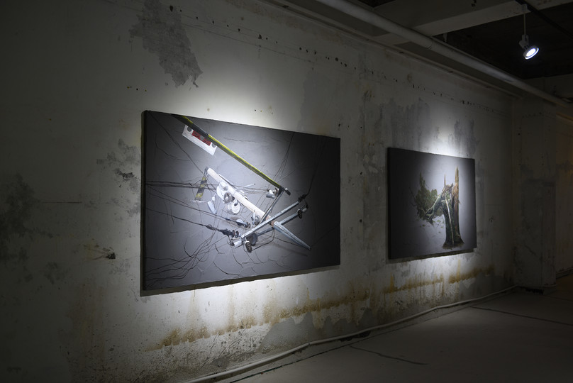 (2) The definition of wisdom, installation view