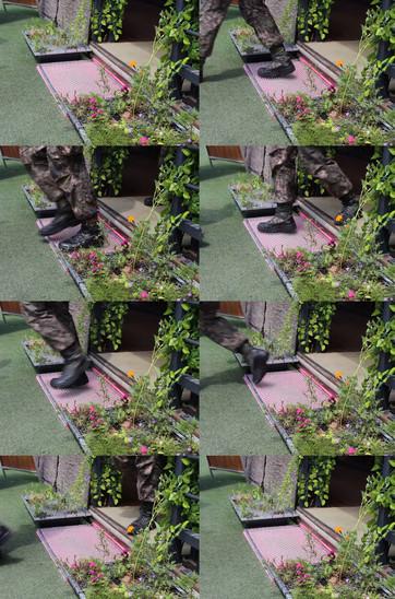 [설치] 이사하는 정원 - DMZ, 혼합재료, 가변크기, 2015