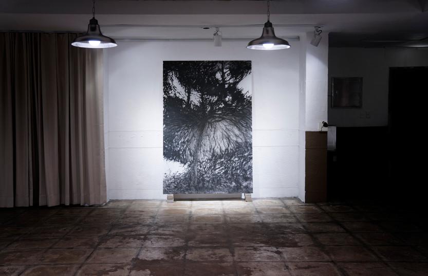 그림자가 되었을때3-1, 전시전경, 200x135cm, 한지에 먹, 목탄, 2017