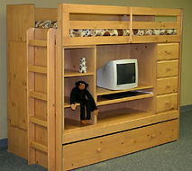 A loft bed that has everything