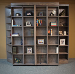 Bookcase Murphy Bed Closed