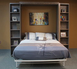 Bookcase Murphy Bed Open