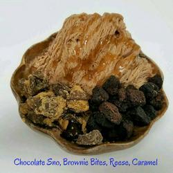 Chocolate Sno, Brownie Bites, Reese, Caramel - Copy.png