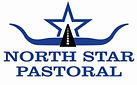 north star logo on white print use.jpg