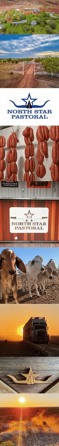 North Star Pastoral _Side Image_long.png
