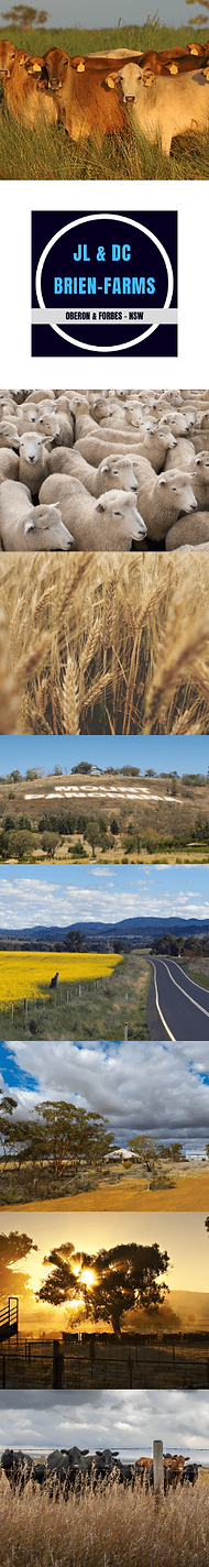 Brien Farms _ Side Image.png