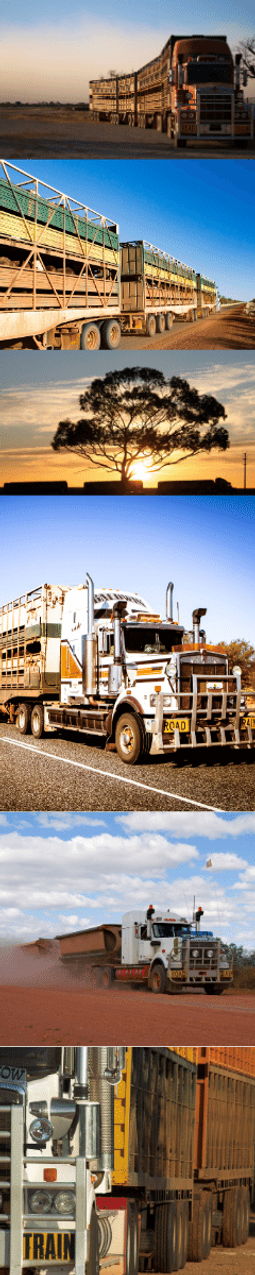 ROAD TRAIN _ SIDE IMAGE.png