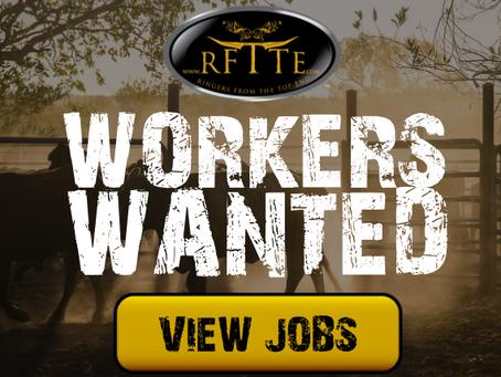 Latest Cattle Station & Feedlot Jobs