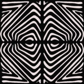 Zebrum digital image files