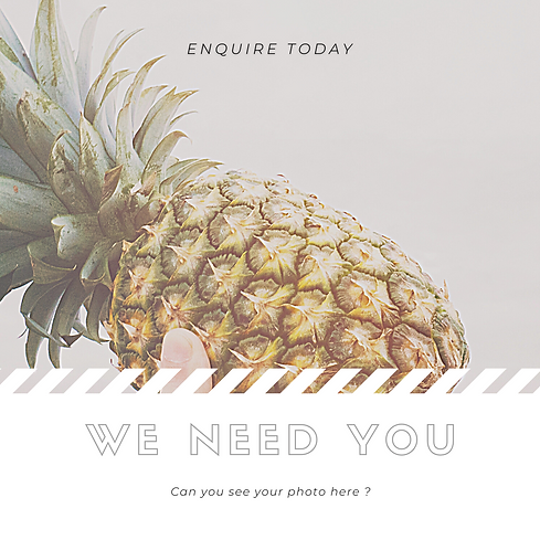 Pineapple Recruitment.png
