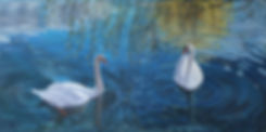 Cisnes. Puchcerda 100x50.jpg