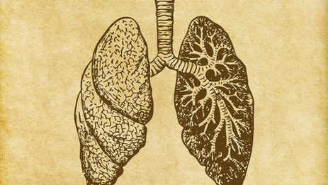 First Adjuvant Therapy for Most Common Type of Lung Cancer
