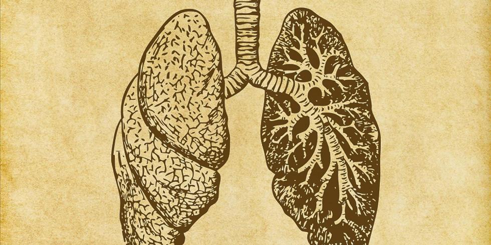 La respiration/ La voix, le corps