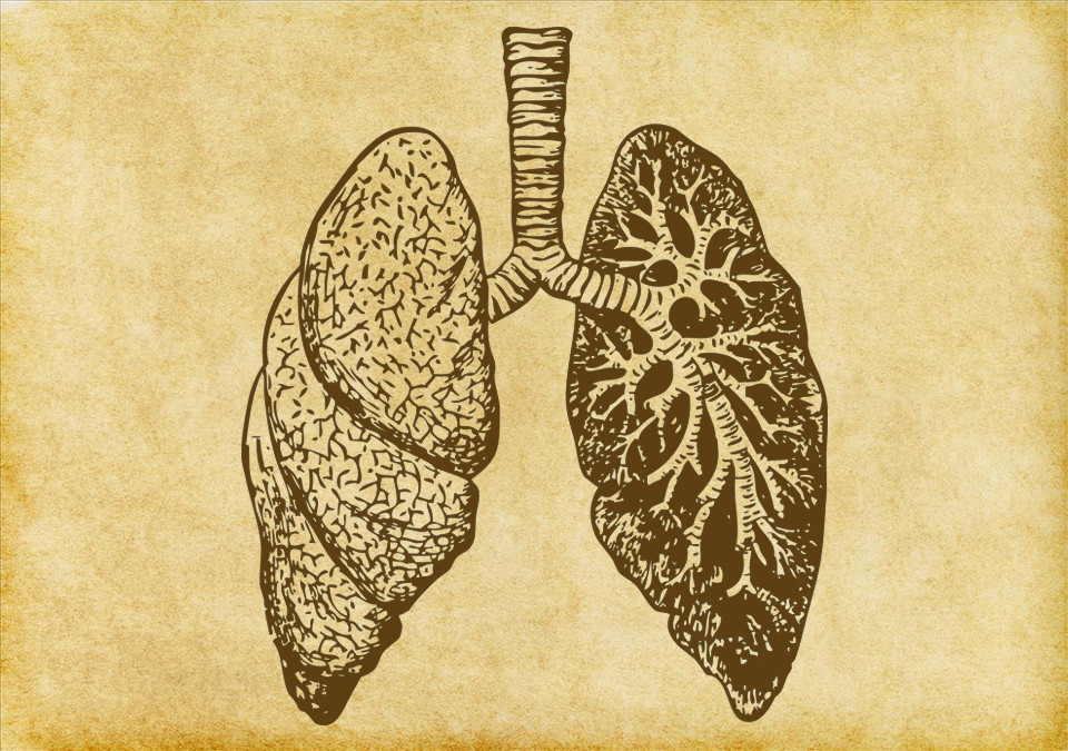 Klooster Dossier: COPD en andere longaandoeningen