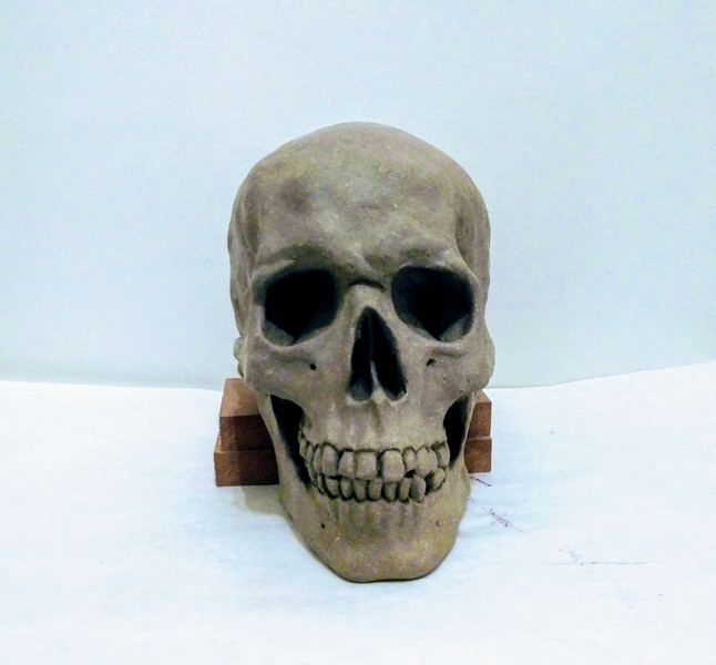 front view of clay skull