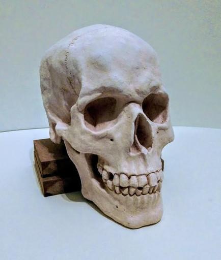 bisqueware stage of ceramic skull