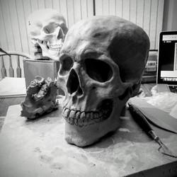 life size clay skull in progress