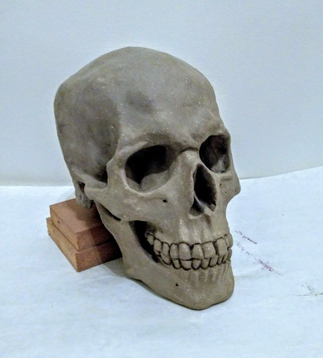 Clay version of life size skull