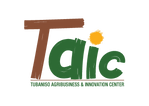 LOGO-TAIC-TRANSPARENT.png
