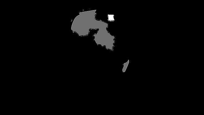 LOGO - FRANCOPHONE AFRICA INVESTORS SUMM