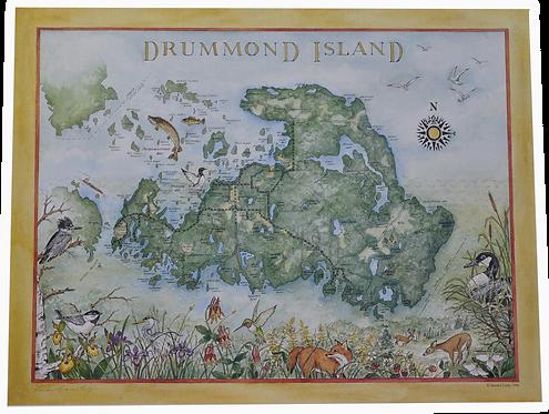 Sandra Ledy Drummond Island Print-501