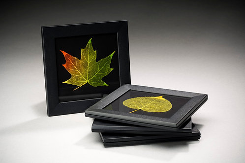 Set of 4 Coasters- 102