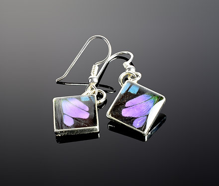 North Haven Gifts-Butterfly Earrings Style #1