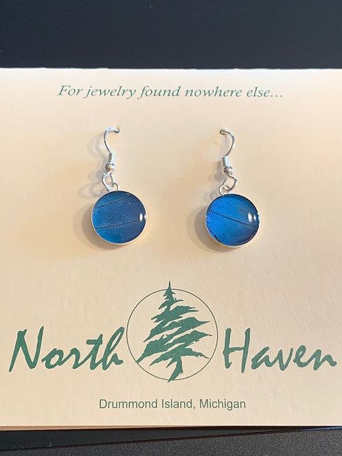 Blue Morpho Butterfly Earrings #10