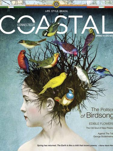 CCM Spring Issue