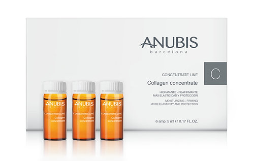 Collagen Concentrate 6 x 5 ml