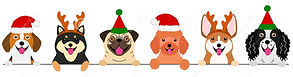 smiling-small-dogs-christmas-costumes-bo