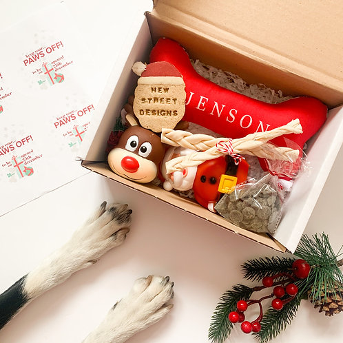 Christmas Dog Special Gift Box