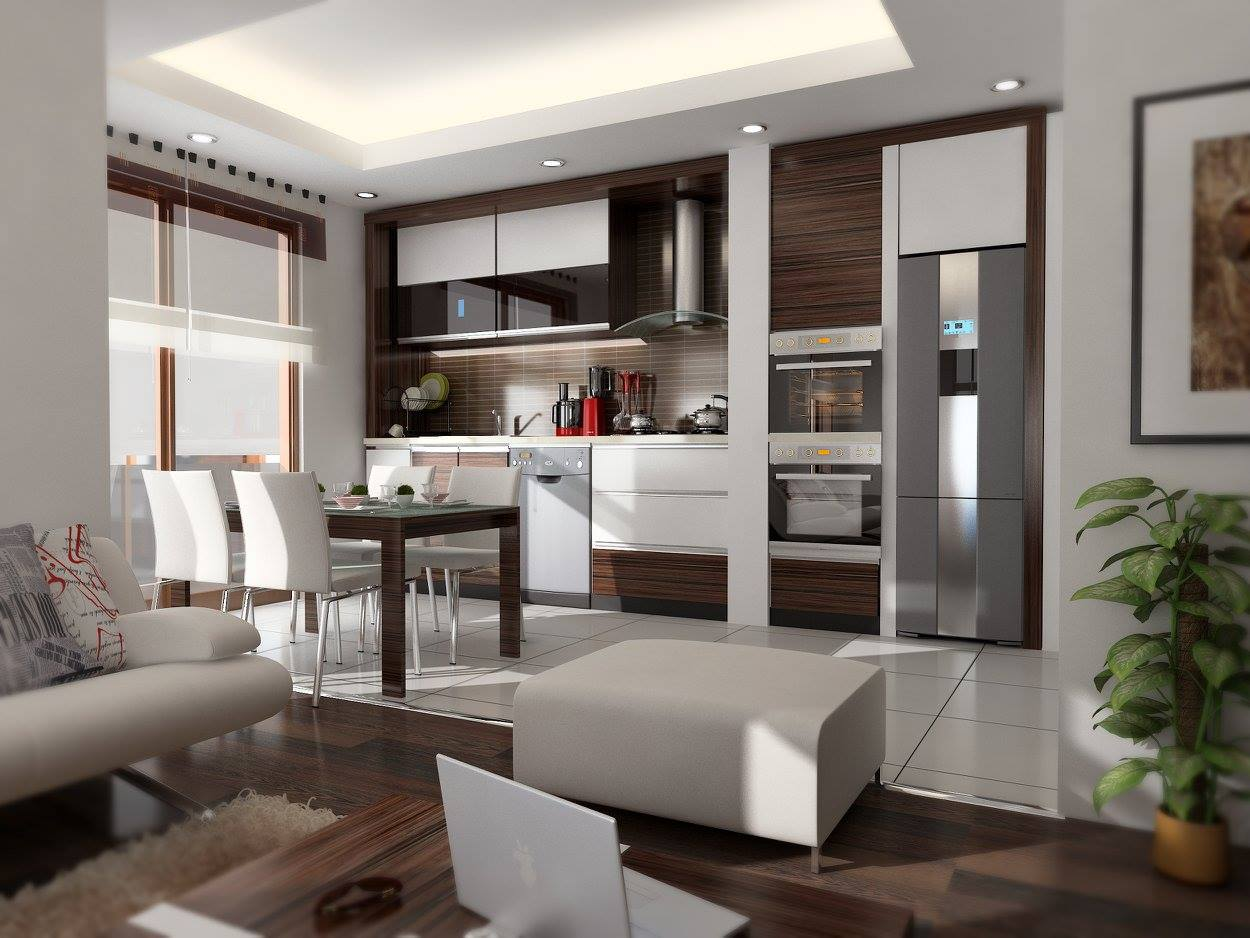 iç mekan tasarımı. salon ve mutfak