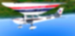 ZK-WAM Waikato Aviation Cessna 172 Prepa