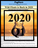 Foghorn 2020 Q1