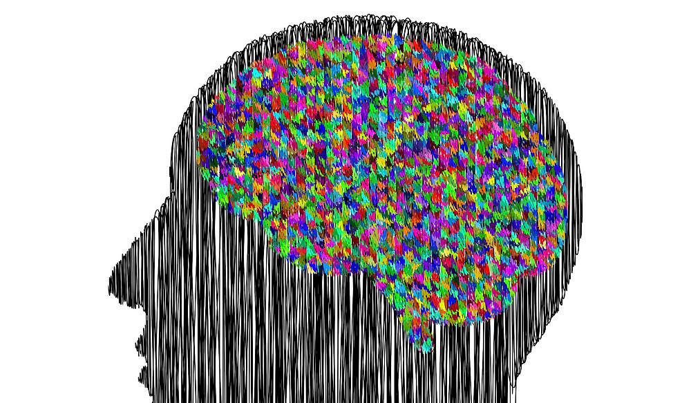 tête et cerveau (dessin)