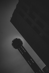 Dallas-11.jpg