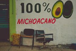 100% michoacano.jpeg