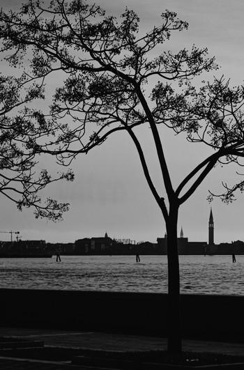 Venecia (72 dpi)-41.jpg