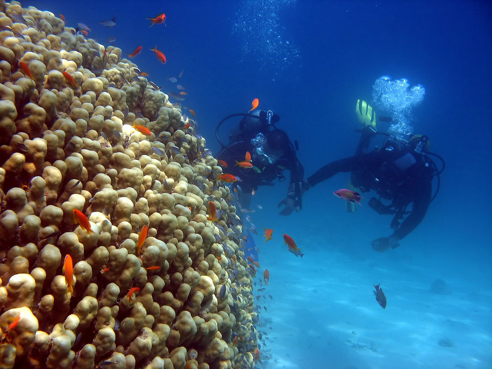 A scuba instructor gives a tourist his f