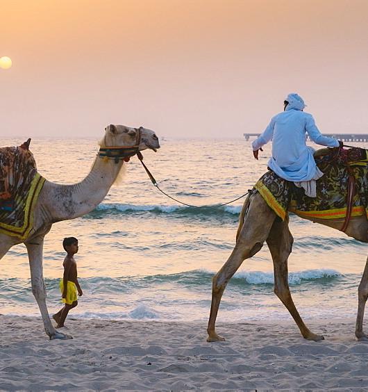 camel boy ocean.jpeg
