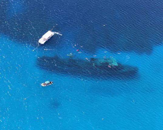 kittiwake-dive-site-grand-cayman.jpeg