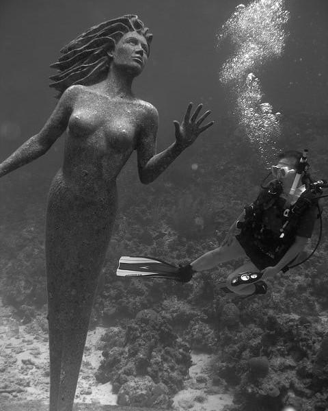 grand-cayman-sunset-reef-scuba-dive.jpeg