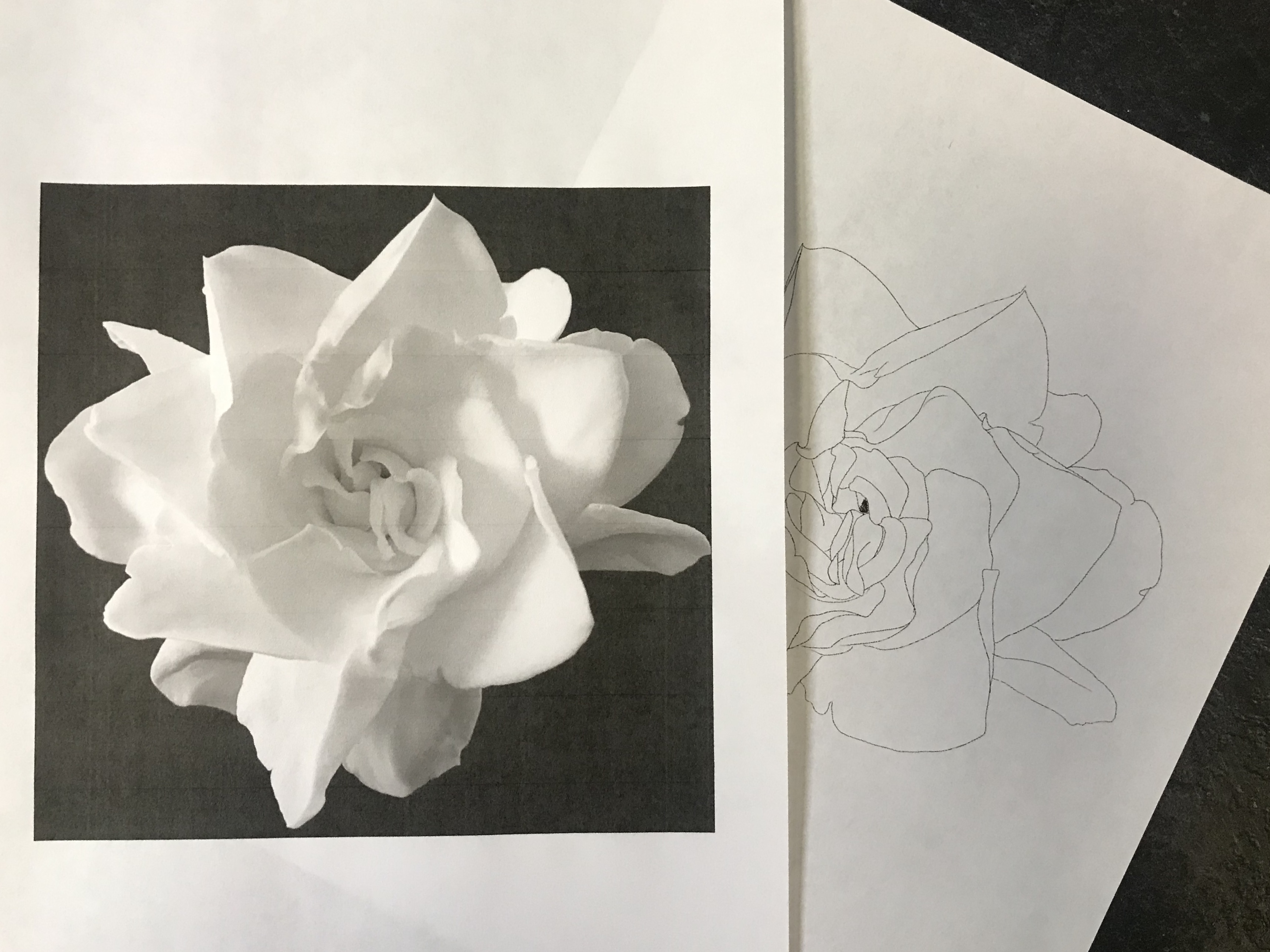 lallen_tattoo - Gardenia 10