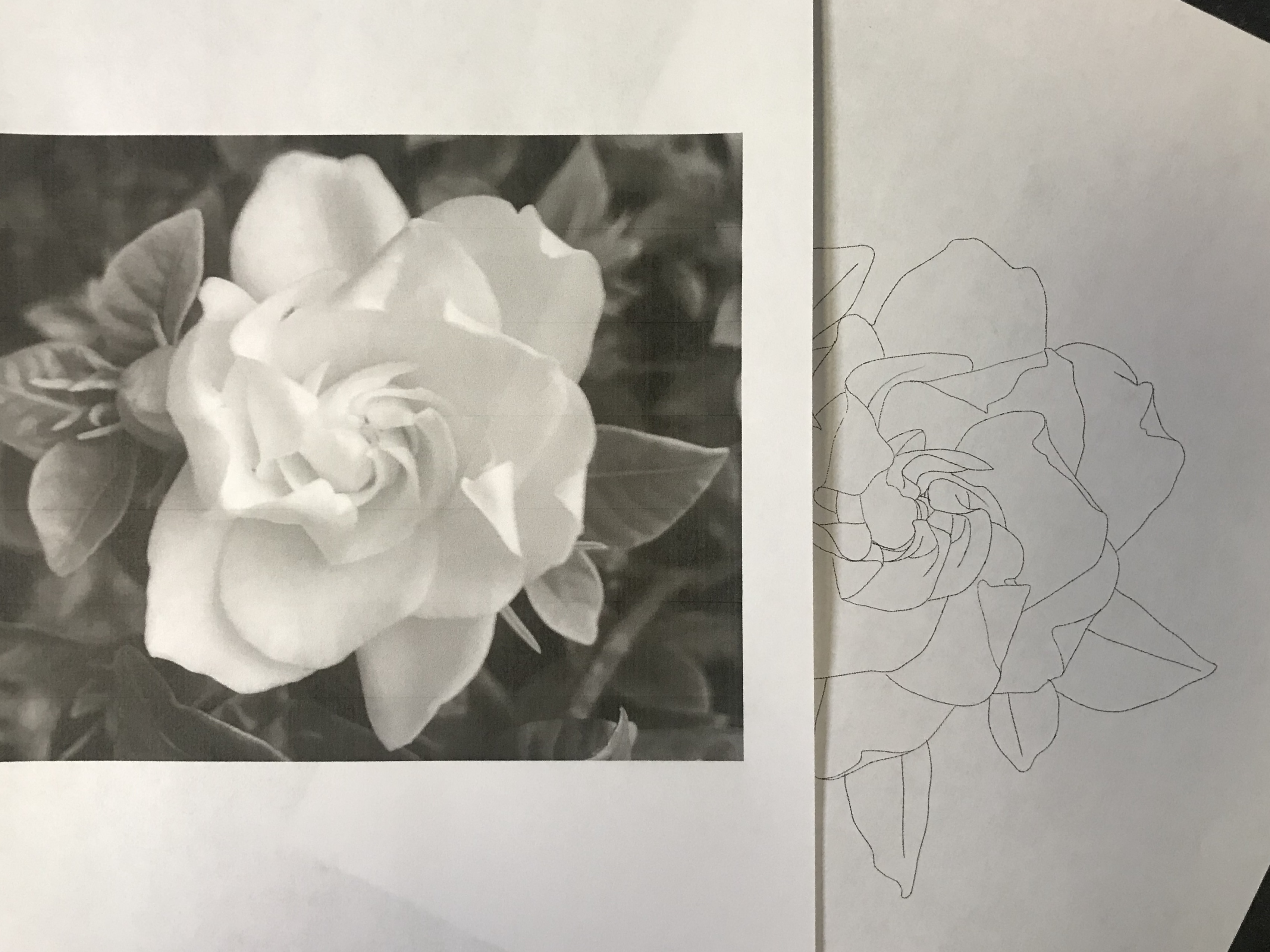 lallen_tattoo - Gardenia 4